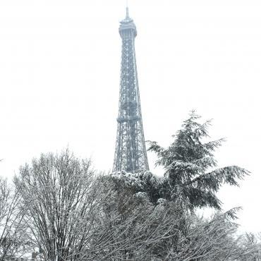 Eiffel tower covered with snow